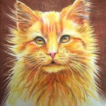 Olly cat